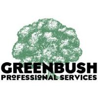 Business Over Breakfast: Greenbush Professional Services