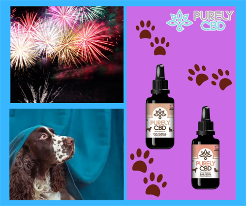 The Fourth of July ???? will be here before we know it and I can't wait! .??However not everyone loves Fireworks.?? Be sure to stop by Purely CBD Eaton and pick up one of our CBD Pet Products. - Salmon Tincture - Natural Tincture - Beef 'N Rice Chews - Biscuits