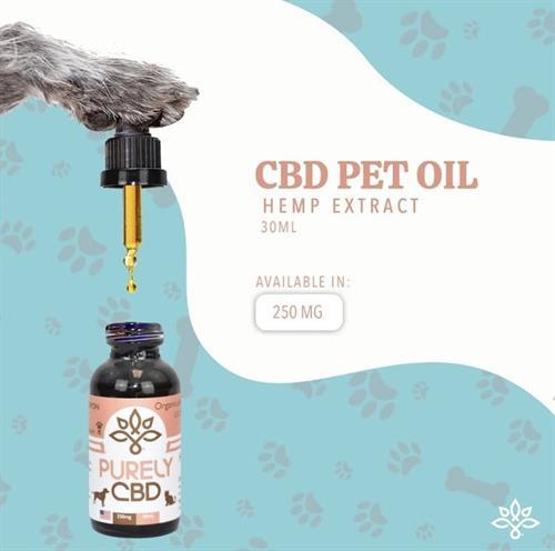 Gallery Image CBD_Pet_Oil.jpg