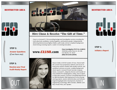 Brochure Pg1 - About Cluso Client Steps and Founder