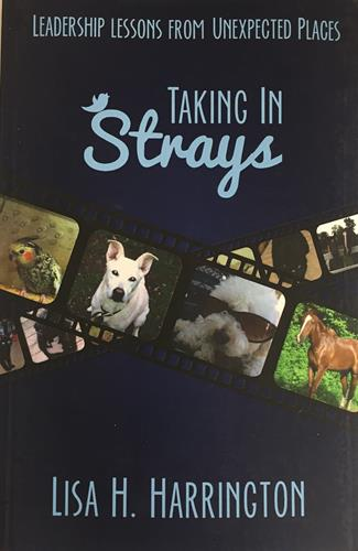 Taking in Strays: Leadership Lessons from Unusual Places.
