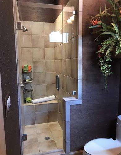 door and small inline panel shower door