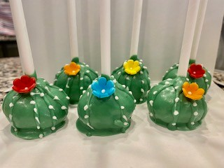 Gallery Image cactus.jpg