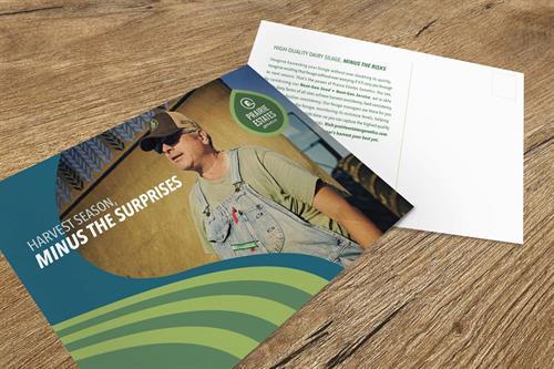 Direct Mail Design for Prairie Estates Genetics