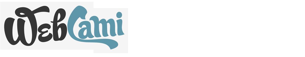 WebCami Site Design