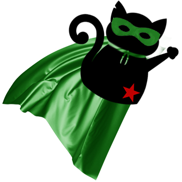 The Unfun Kitty goes to Emerald City Comicon