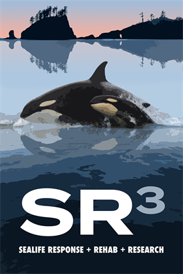 SR3 Sealife Response, Rehab and Research