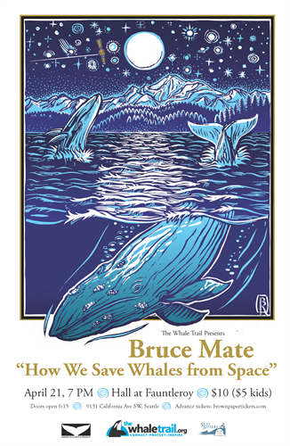Poster for Orca Talk with Bruce Mate