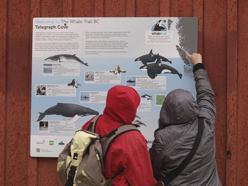 Whale Trail Sign, Telegraph Cove, BC
