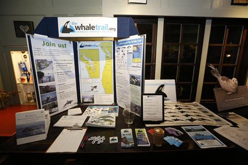Whale Trail Display at an Orca Talk, C&P Coffee