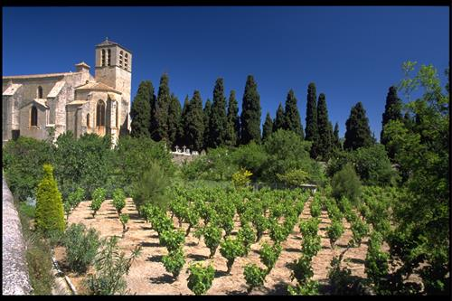 Winemaking in the region started with the Romans 2000+ years ago