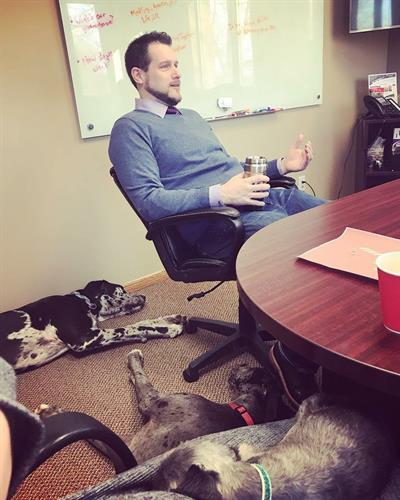 Gallery Image Dan_and_Dogs_in_Conference_Room.jpg