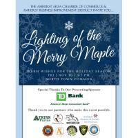 Lighting of the Merry Maple 2018