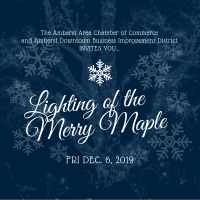 2019 Lighting of the Merry Maple
