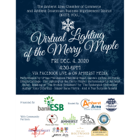 Virtual Lighting of the Merry Maple