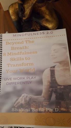 Gallery Image mindfulness_2.0_book.jpg