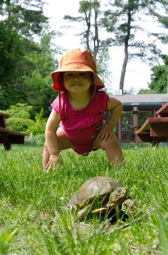 Spending time with Speedy the Eastern Box Turtle, one of our live exhibits.