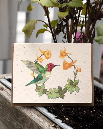 Anna's Hummingbird and Yellow Larkspur Plantable Greeting Card