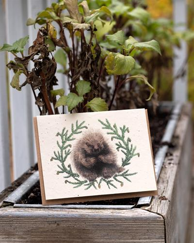 Porcupine and Hemlock Plantable Greeting Card