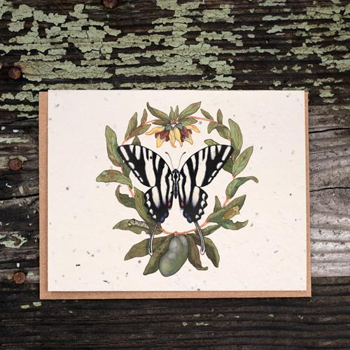 Zebra Swallowtail & Four Petal Pawpaw Plantable Greeting Card