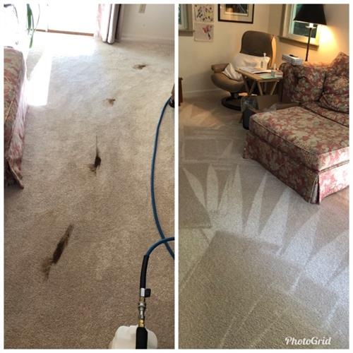 Carpet Cleaning Amherst, Ma