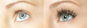 Lash and brow services