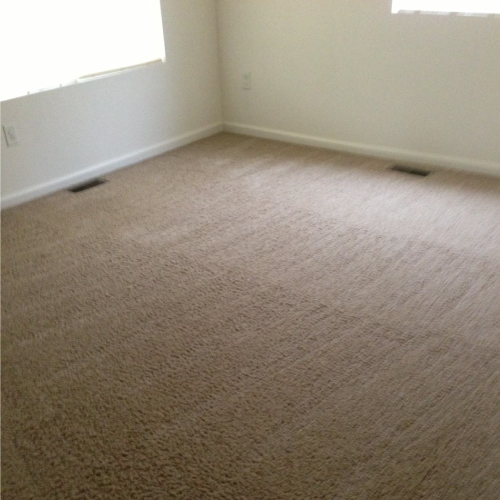 Rental Property Carpet Cleaning