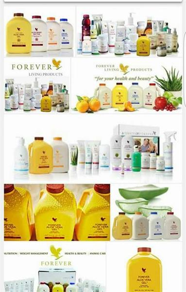 FOREVER LIVING PRODUCTS - MIDDLETOWN AREA CHAMBER OF