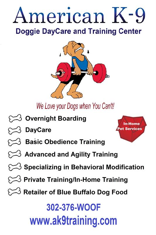 AMERICAN K-9 DOGGIE DAYCARE & TRAINING, LLC