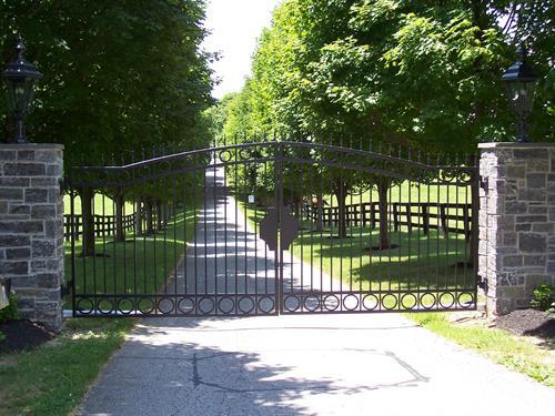 Electric Gate