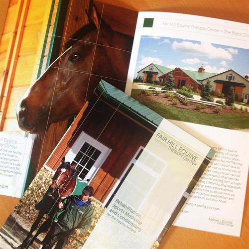Gallery Image Fair_Hill_Equine_Editorial_Brochure.jpg