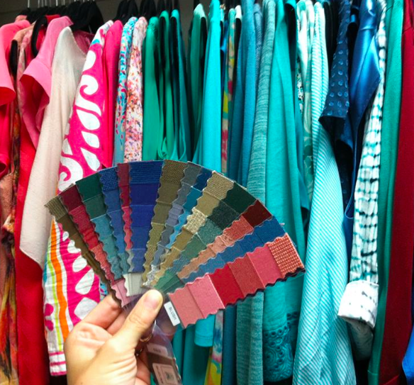 Color Analysis Fan used to assess colors in her wardrobe