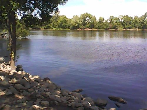 Site 71 view of Mississippi River. 7-29-2015