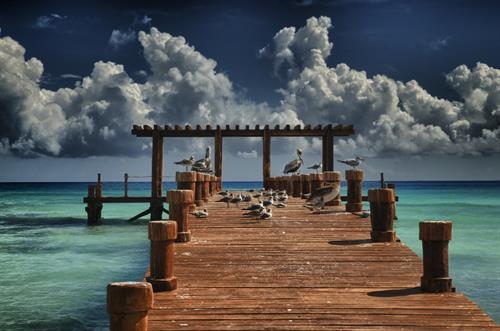 "Playa Del Carmen ""Bird Dock"""