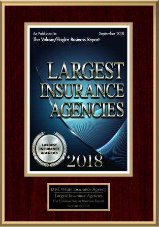Largest Insurance Agency
