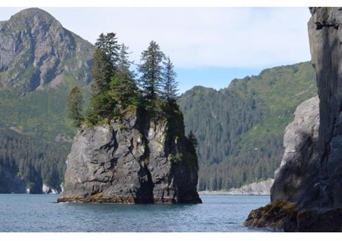 Shore Excursion in Seward Alaska