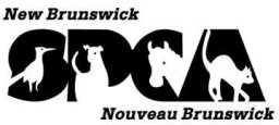 New Brunswick SPCA