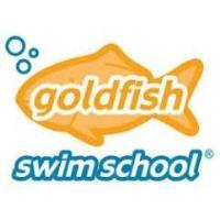 Goldfish Swim School-Falls Church - Falls Church