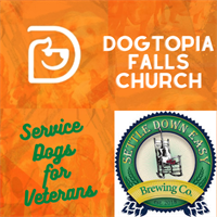 Dogtopia Falls Church Foundation Fundraiser- Service Dogs for Local Veterans