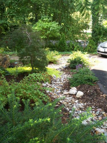 Dry creek bed to reduce water runoff, design and installation by Terra Landscape and Design
