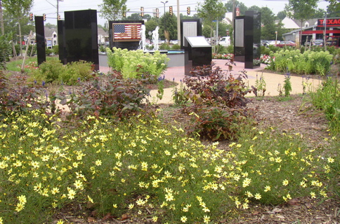 Plant and flower design and installation by Terra Landscape and Design