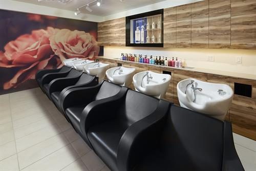 Luxury Shampoo Lounge - our Guests Favorite!