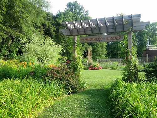 Woodbury's Community Garden