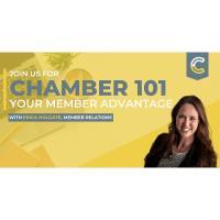 Virtual Chamber 101 Session