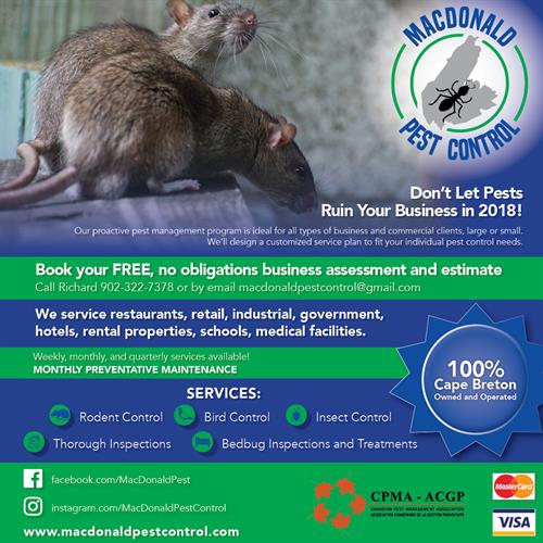 Pest Control for Your Business