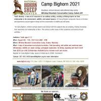 National Bighorn Sheep Center - Dubois