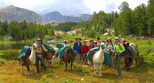 Ready to llama trek