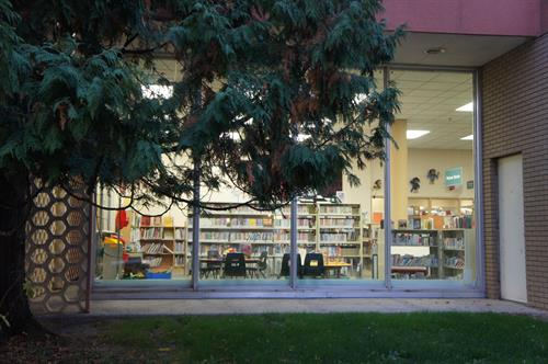 Looking into the Children's department