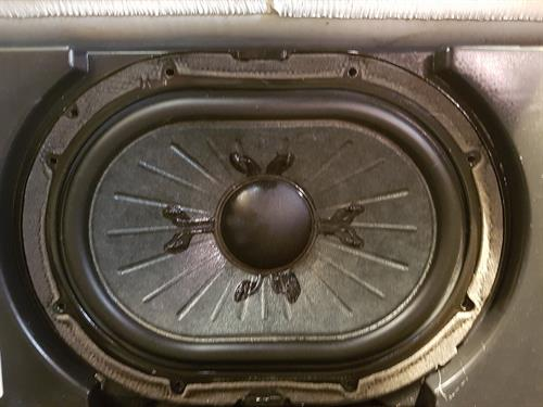 Dog Hair After (Removed the Speaker cover)