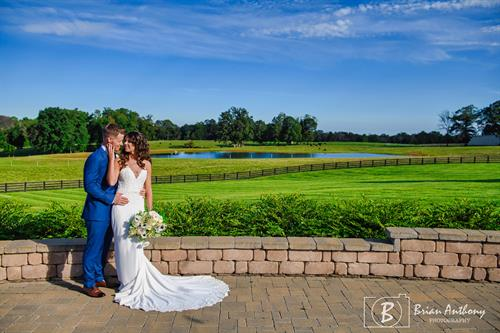 Gallery Image 6_Grass_View_-_Brian_Anthony_Photography.jpg